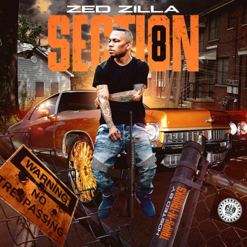 Zed Zilla - Section 8 Cover Art