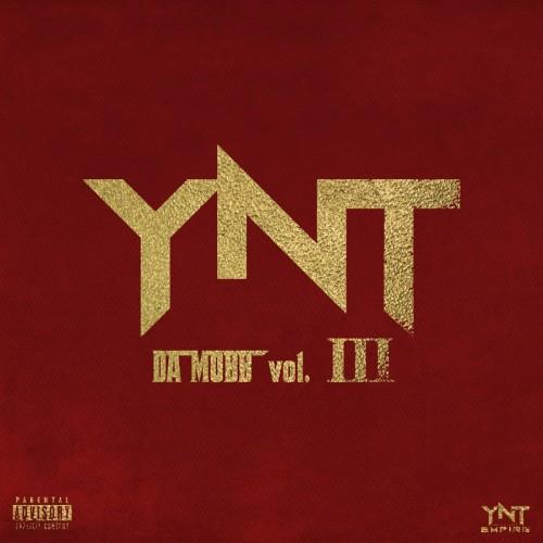 Various Artists - YNT Da Mobb 3 Cover Art